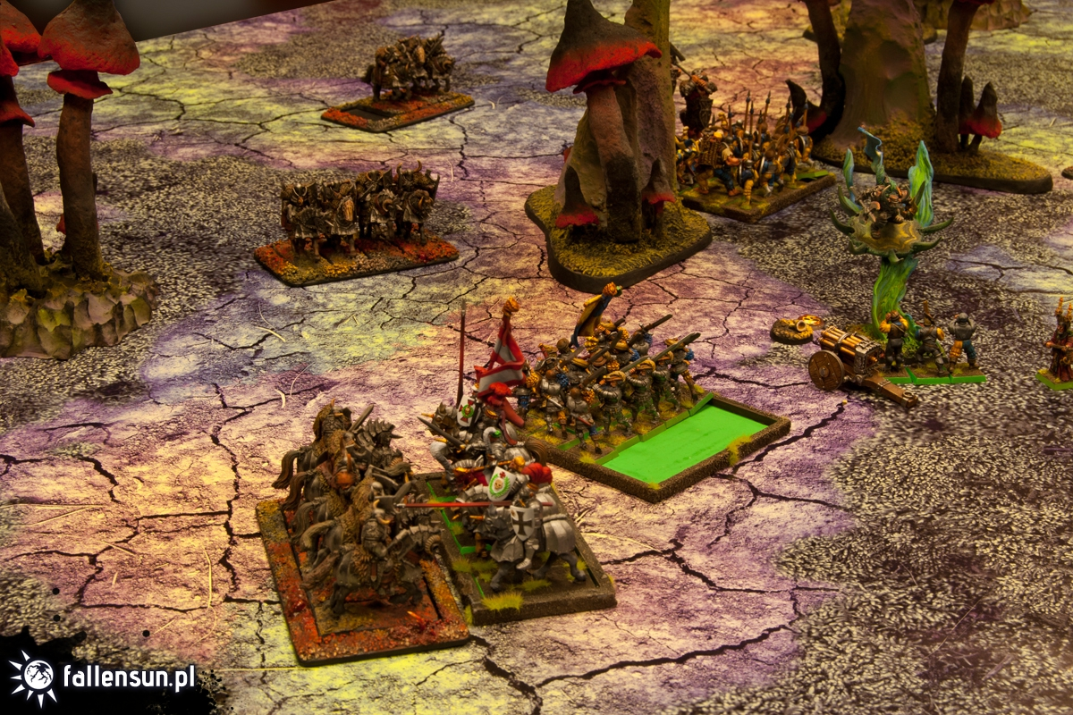 FallenSun Battle Party - Warhammer - 6th edition - wfb - Tournament